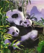 Panda Retreat Queen Super Soft Plush Mink Blanket 200cm x 240cm