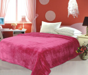 500 High Quality Queen King Microfiber Blanket