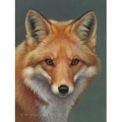 Red Fox Plush Raschel Queen Size Super Soft Blanket 79x95