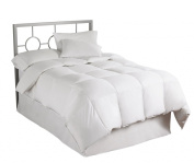 Asthma and Allergy Friendly Down Alt Twin Comforter
