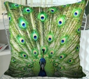 Fablegent XH106 - Elegant Decorative Throw Pillow Cover - Peacock Feather Fashion Design on Both Sides - Soft Velvet Fabric