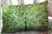 XH108 - Elegant Decorative Throw Pillow Cover - Rectangular Peacock Feather Fashion Design on Both Sides - Soft Velvet Fabric