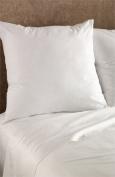 Euro 70cm X 70cm Pillow Insert