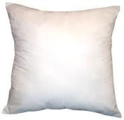 DreamHome - 46cm X 46cm Square Poly Pillow Insert