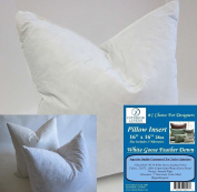2 Pillow Inserts