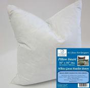 41cm x 41cm 830ml Pillow Insert