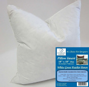 46cm x 46cm 1040ml Pillow Insert