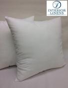 60cm x 60cm , 1150ml Pillow Insert