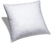60cm X 60cm Pillow Insert Non-woven