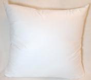 Safe Guard Antimicrobial Pillow Form Insert Filler