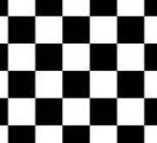 New Throw Pillow Slip Cover made from Black & White Chequered Flag Nascar fabric
