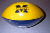 Patch Products Michigan Wolverines Football