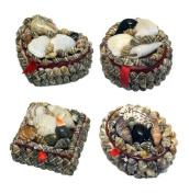 Shell / Jewellery Box