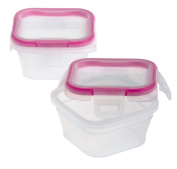 Snapware 1111577 2-Pack 1.34-Cup Total Solution Plastic Small Square Container with 4-Latch Locking Lid