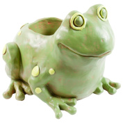 Animal World - Frog Body Storage Container - Green