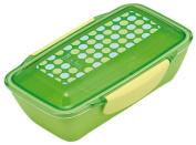 LE BOIS dot dome lunch box mint 658 652