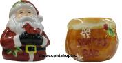 CIC Jolly Santa 3D Salt and Pepper Shaker