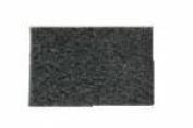 Genuine Carpet Pro CPU1T/CPU2T Secondary filter