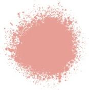Professional Spray Paint Cadmium Red Light Hue 6