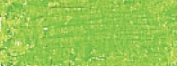 Oil Pastel Greenish Yellow 243.5