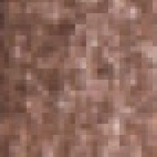 Chubby Coloured Pencil Brown