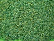 Architectural Model 60cm x 90cm Blended Green Grass Mat