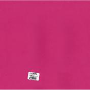 Bazzill Cardstock 30cm x 30cm
