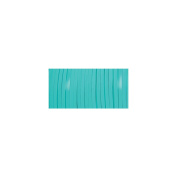 Rexlace Plastic Lacing .2380cm Wide 10yd Spool-Turquoise