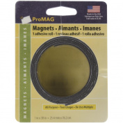 Magnetic Tape Roll 1/Pkg-2.5cm x 80cm