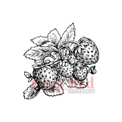 Deep Red Cling Stamp 5.1cm x 5.1cm -Strawberries