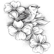 Stacy Stamps Cling Mounted Stamps 8.3cm x 9.5cm -Chipping Sparrow