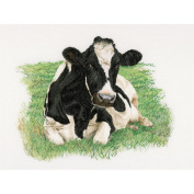 Cow On Aida Counted Cross Stitch Kit-60cm - 1.6cm x 45cm 16 Count