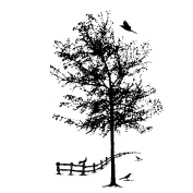Magenta Cling Stamps 8.9cm x 5.1cm -Country Landscape
