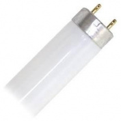 General 20408 - FL20SSCW/18 Straight T8 Fluorescent Tube Light Bulb