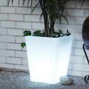CompassCo Bon D cor Square Illuminated Pot Planter