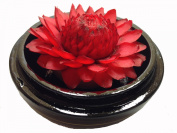 Chaval Soap Carving Flower 10cm Red Torch Ginger 2.5cm Decorative Painting Pine Wood Case New Scented Handcrafted Soap Flower