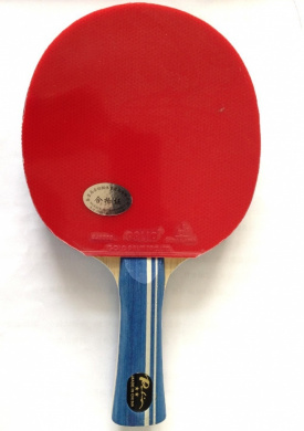 Palio Expert Table Tennis Bat