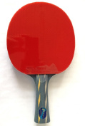 Palio Master Table Tennis Bat and Case