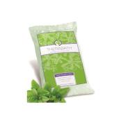 Paraffin Wax Refill- Therabath 1 lb. Wintergreen Beads - World Wide Shipping