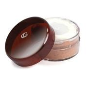 CoverGirl Professional Loose Powder, Translucent Honey 120 20ml