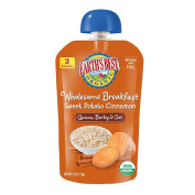 Earth's Best Wholesome Breakfast Sweet Potato Cinnamon Pouch - 120ml