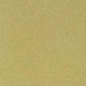 LaCarte Light Green Pastel Paper - 50cm . X 60cm .