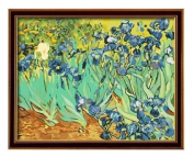 Diy oil painting, paint by number kit- worldwide famous oil painting Irises by Van Gogh 16*50cm .