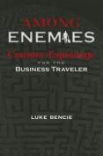 Among Enemies