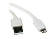 6FT LIGHTNING TO USB IPHONE IPOD IPAD APPLE CERTIFIED WHITE 2M