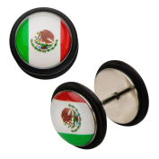 Inox World Cup Mexico Stainless Steel Fake Plug Earrings