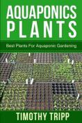 Aquaponics Plants