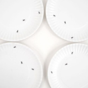 """What Is It."" Eco Friendly Reusable White Dinner Plates with Ant Design-Set of 4"