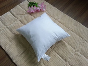 Set of 2, 46cm x 46cm ,Hypoallergenic Poly fill with Cotton Cover