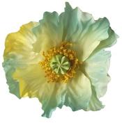 Medium Poppy Artificial Flower Hair Clip/Pin Brooch, Yellow Blue